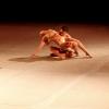 Momenti di Danza Contemporanea per la Caritas di Roma