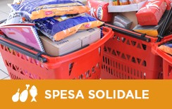 spesa-solidale