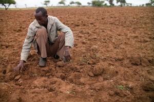 Carestia_Sahel